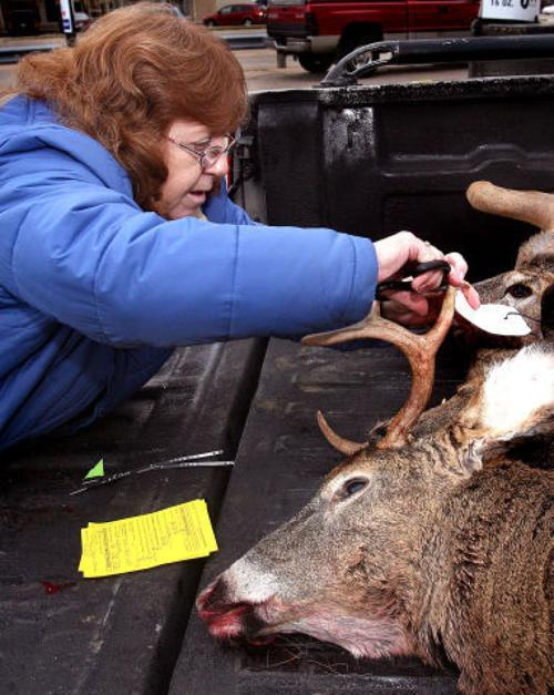 Outdoors: History of the deer hunt in Wisconsin | Outdoors ...