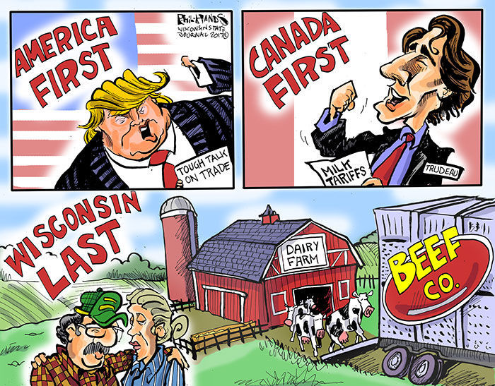 Image result for cartoons trump tariffs canada