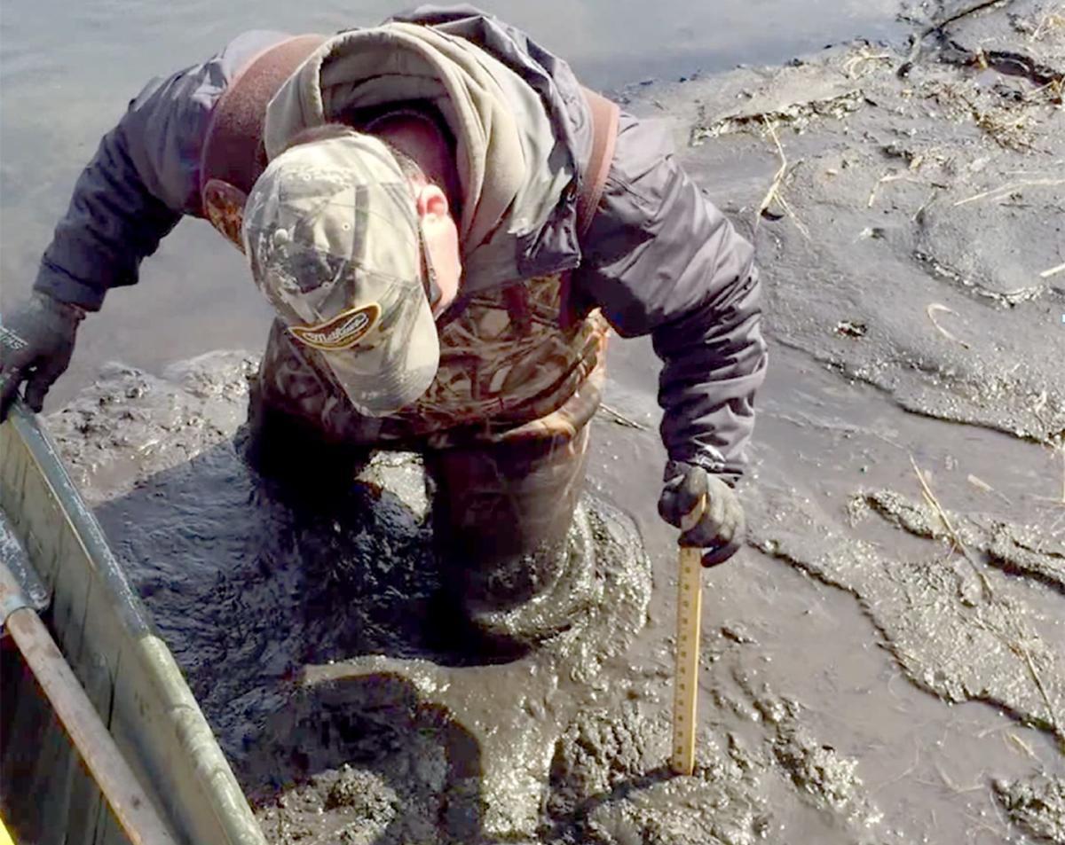 Dorn Creek sediment (copy) (copy)
