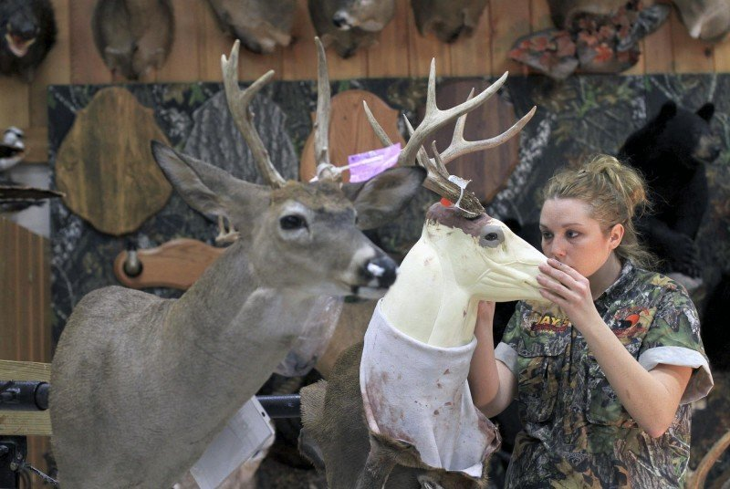 Taxidermist loves her job outdoors for Fish taxidermy near me