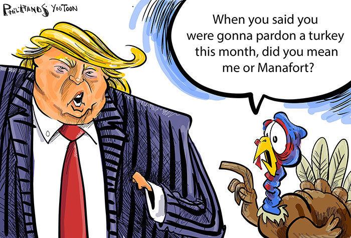 Winning Turkey You Toon