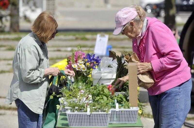 Dane County Wednesday Farmers' Market