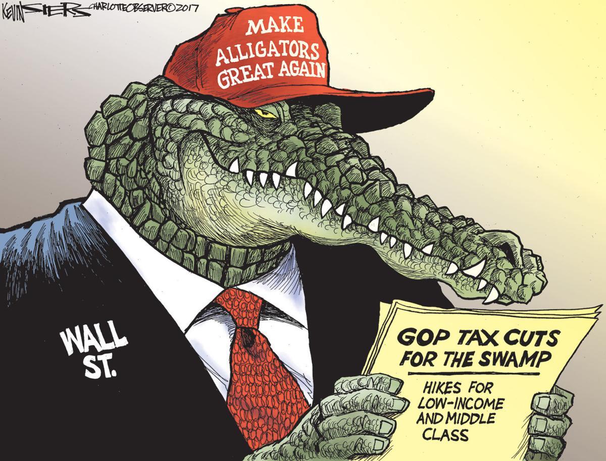 Tax reform cartoon
