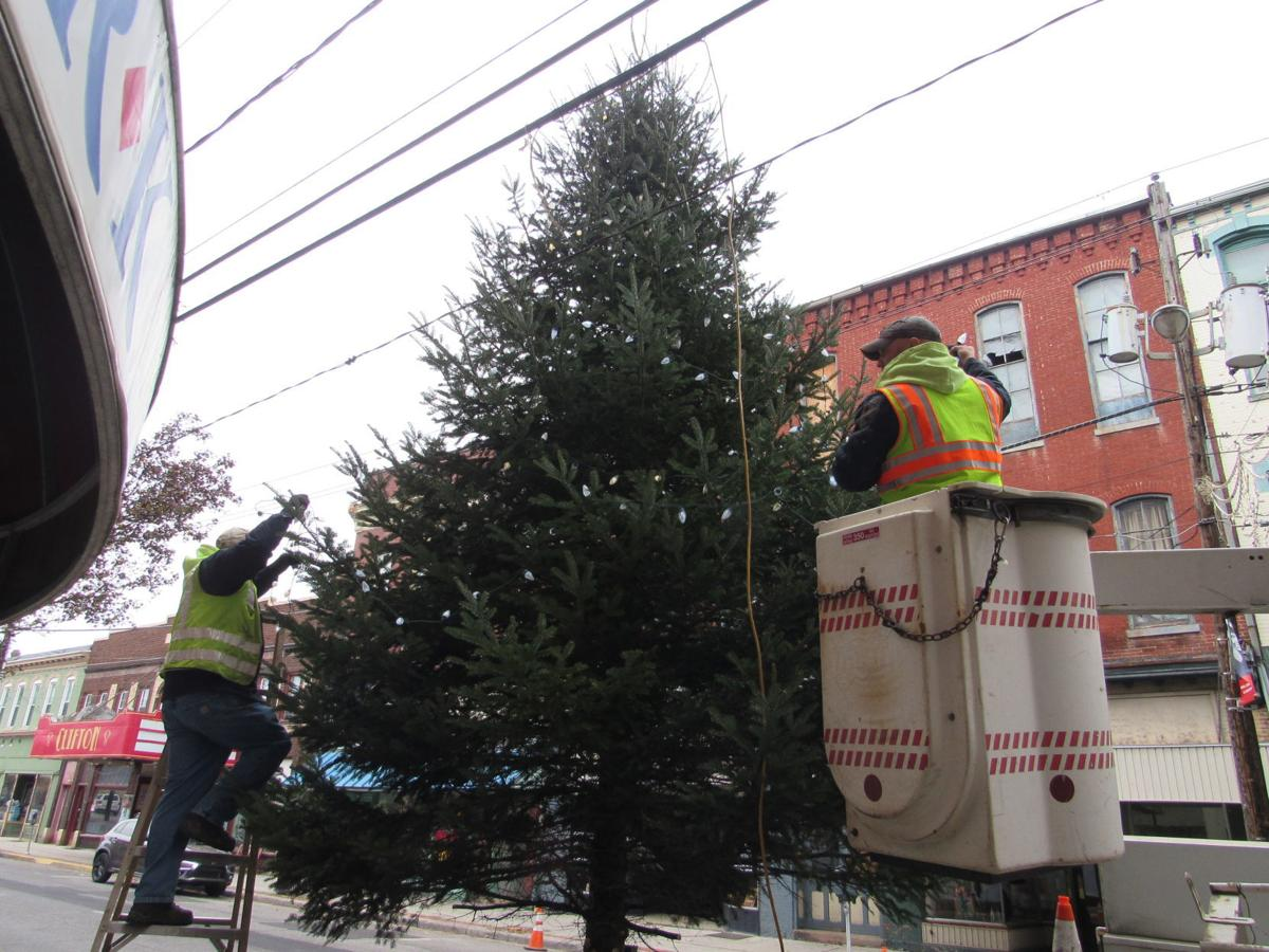Huntingdon Christmas Tree