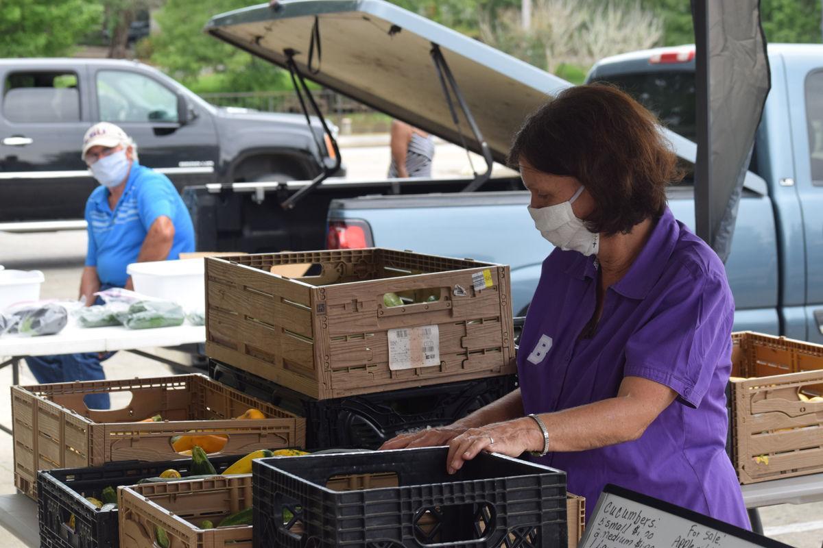 Teche Area Farmers Market as popular as ever