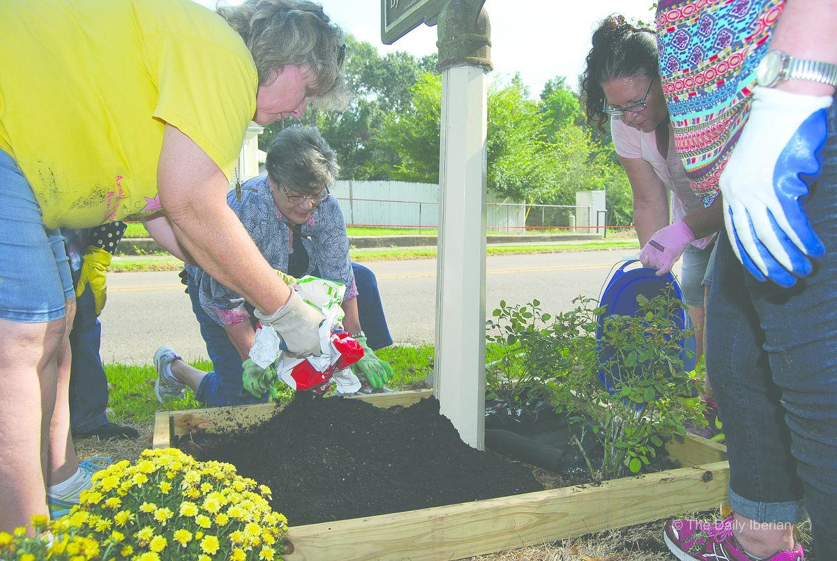Flower Bed Planting Takes On Deeper Meaning Local News Stories