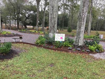 New Iberia Garden Club December Garden of the Month