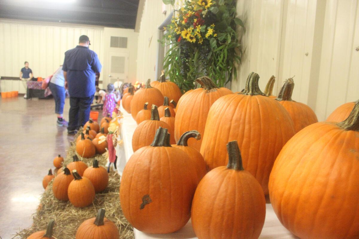 Hundreds set to attend Pumpkin Patch event in Loreauville with children's games, decorated pumpkins