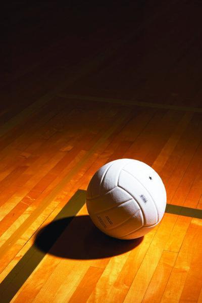 Catholic High leads area volleyball playoff hopefuls