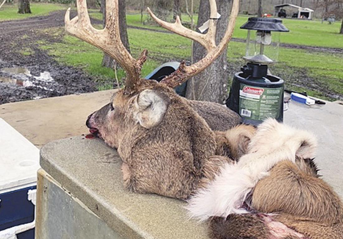 Patience pays off  with third, biggest buck