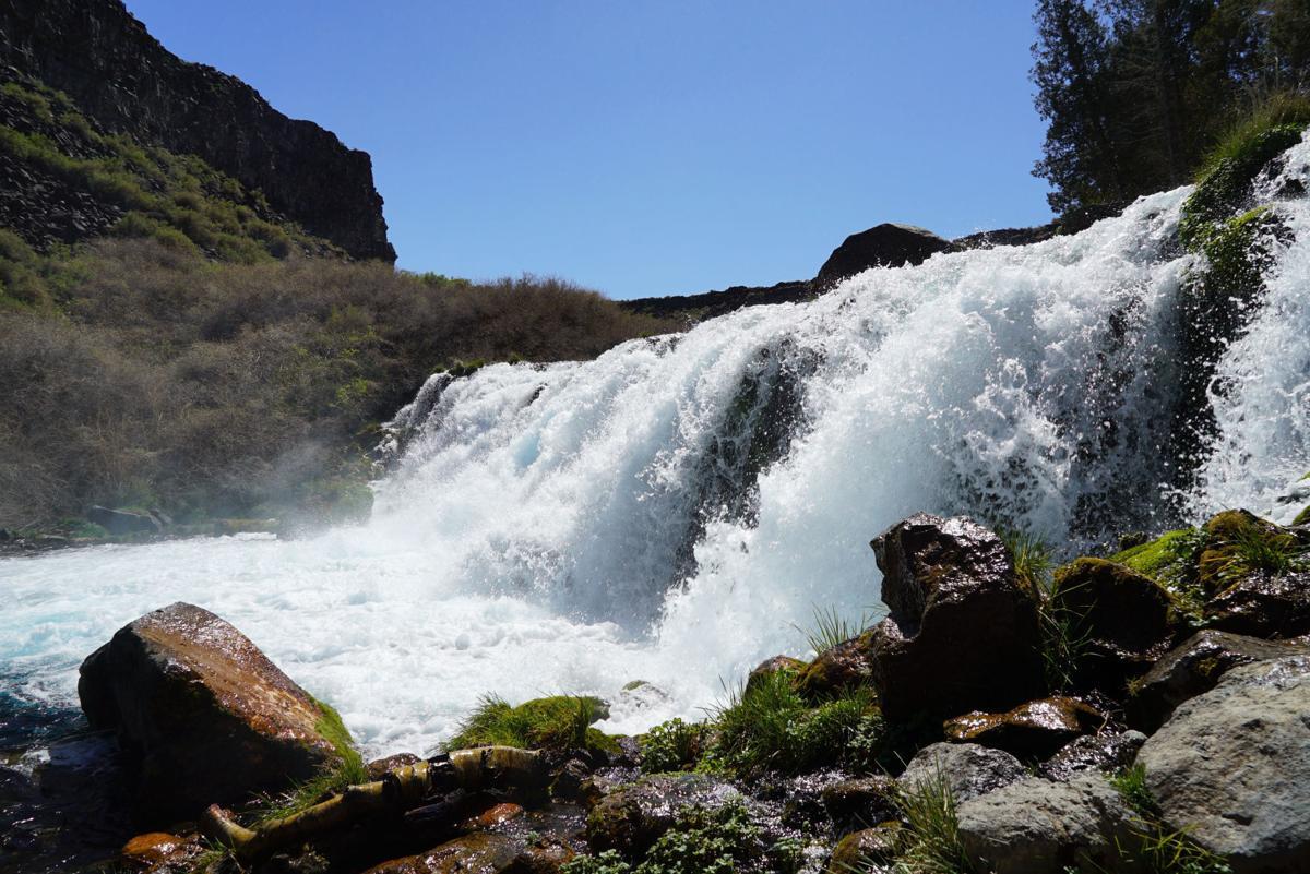 Waterfall at Box Canyon Springs  Photo Eric Straubhar.JPG