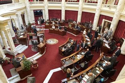 Senate AP generic 2021