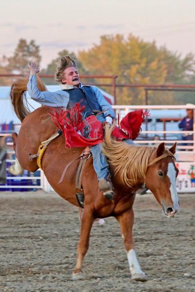 Saddle Bronco ICA action