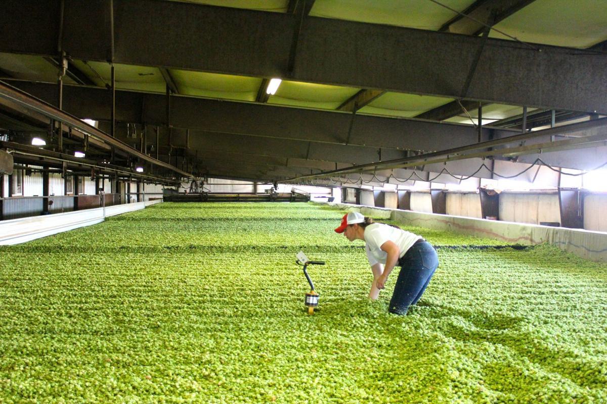 Gooding Farms
