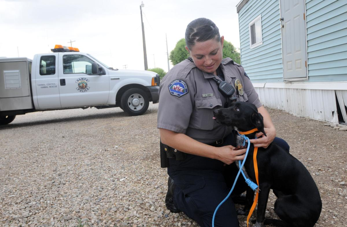 Four Stars Auto Ranch >> A look to local animal control units   Members ...