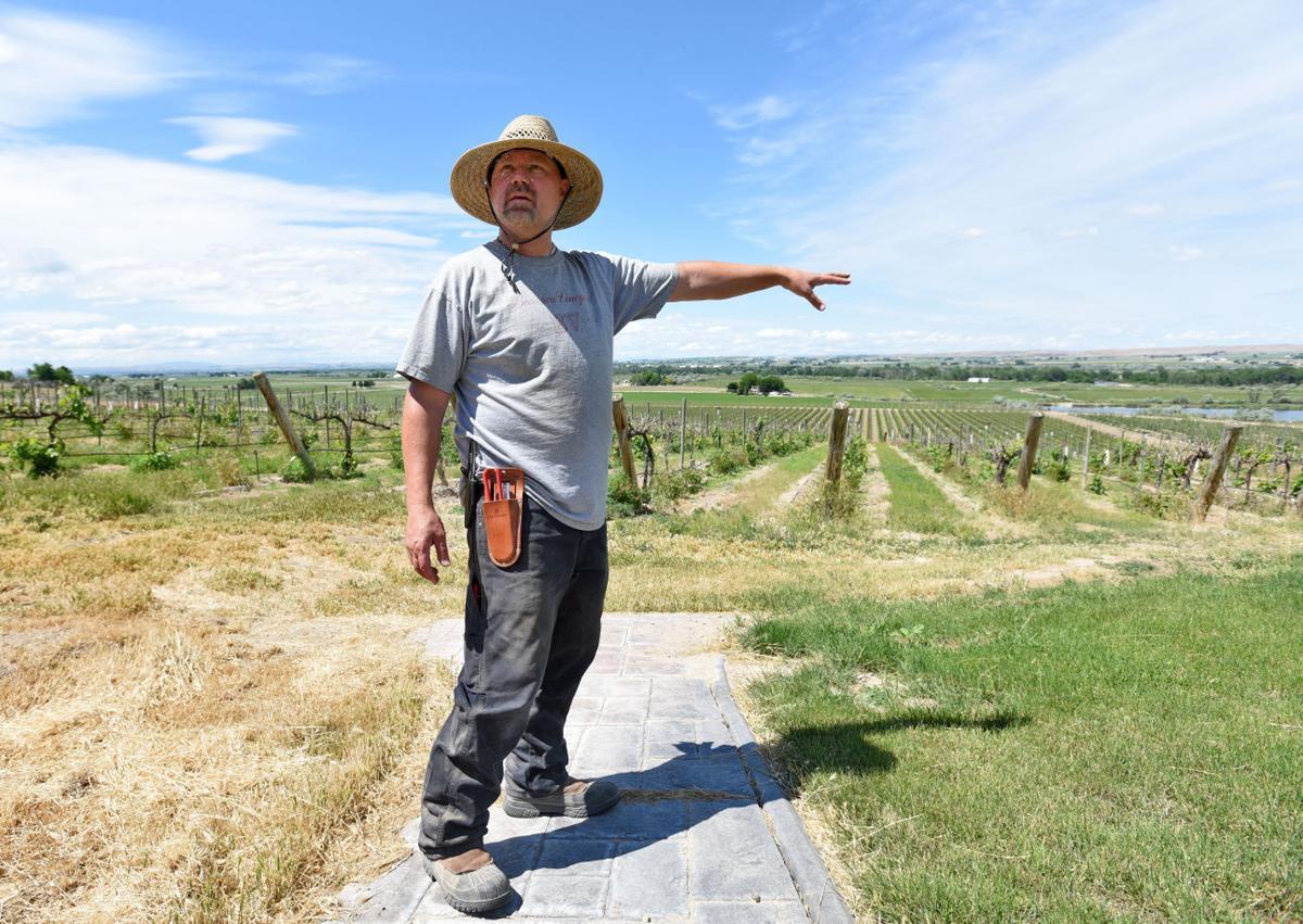 Parma Ridge Wine