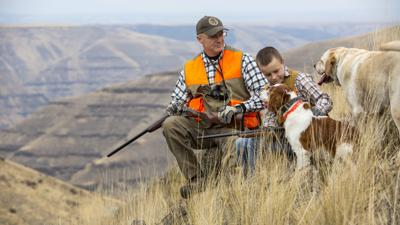 Upland game bird outlook for fall