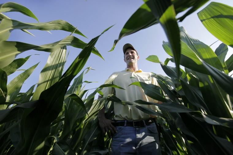 Can Iowa's boom farm times shape White House race?