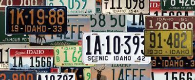License plates illustration cropped