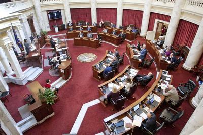 Senate floor file april 2021