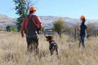 Pheasant Hunters at Montour WMA