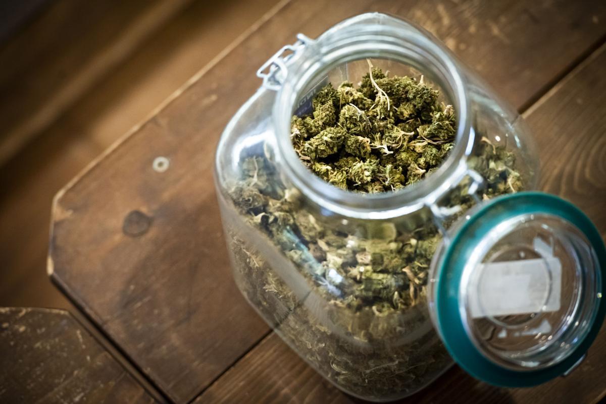 Medical Marijuana06.JPG