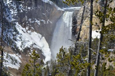Yellowstone National Park to hold annual Winter Photo Festival (copy)