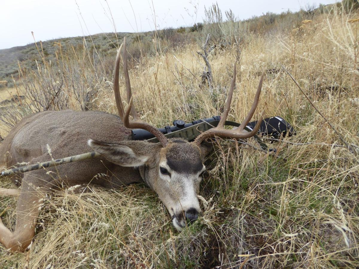 Deer harvests down elk on par in early reports outdoors for Plenty of fish boise