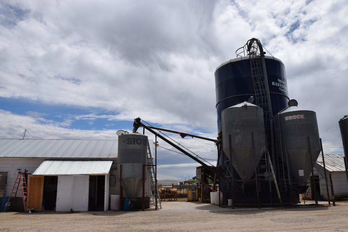 Dairy industry continues to thrive in Idaho while dwindling in
