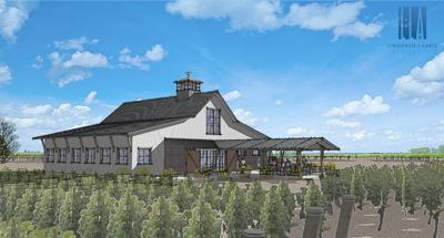 3 Horse Ranch Vineyards to become a winery