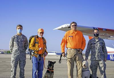 IDWG_Search_Dog_Transport_221