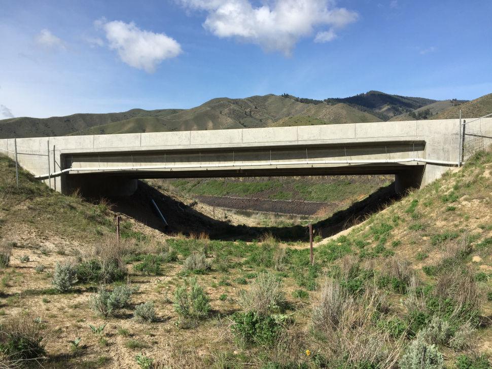 Wildlife underpass Highway 21