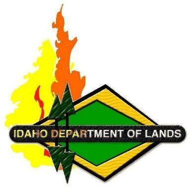 IDL Wildfire logo