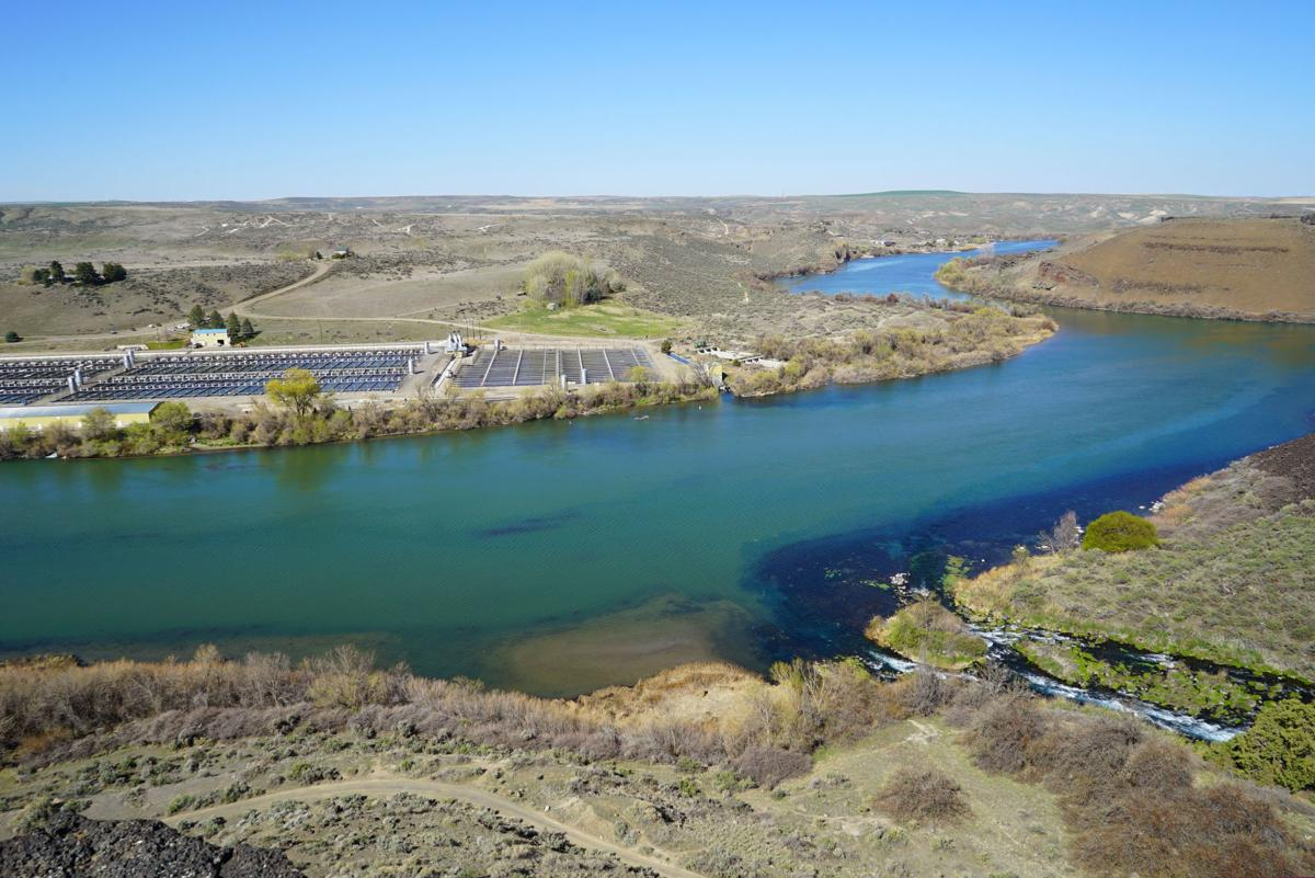 The confluence of Box Canyon Springs and the Snake River and a fish farm  Photo Eric Straubhar.JPG