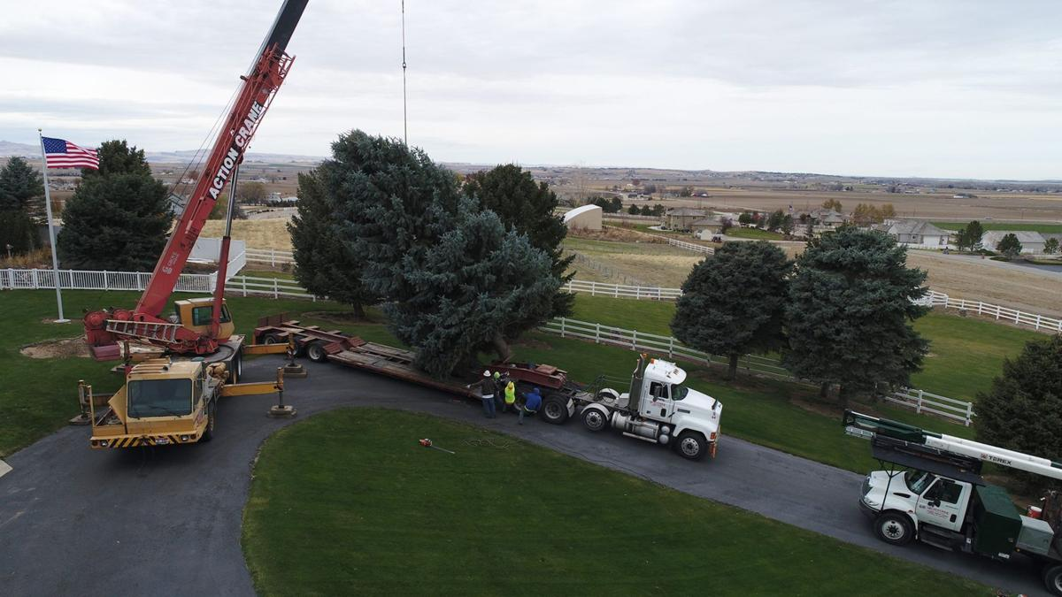 Community invited to downtown Nampa tree lighting | Local News ... on