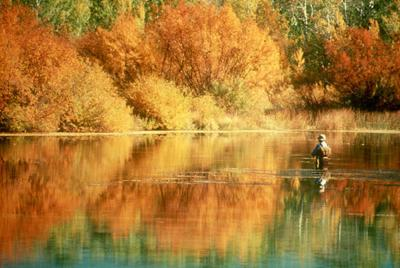 Great reasons why you should fish during fall