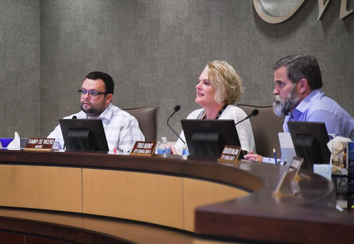 Meridian City Council