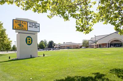 Boise Schools Borah sign trees (No Caption)