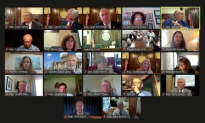 Screenshot House and Senate Ed working group 7-30-30