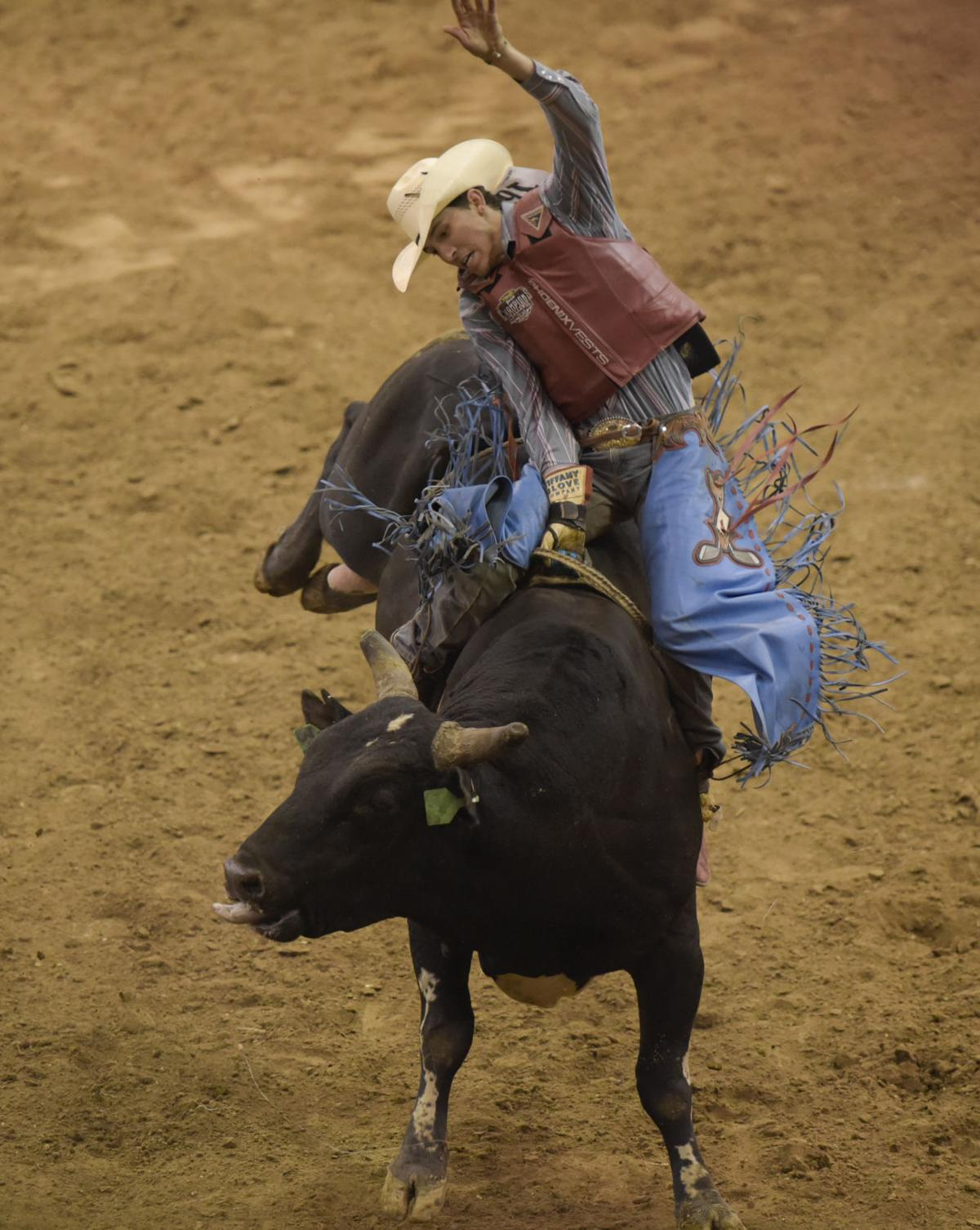 New Plymouth Native Jarboe On Fast Track To Bull Riding