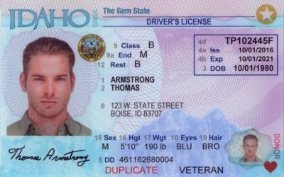 Image result for real id card pictures