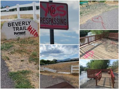 Vandalism at Edson Fichter Pond