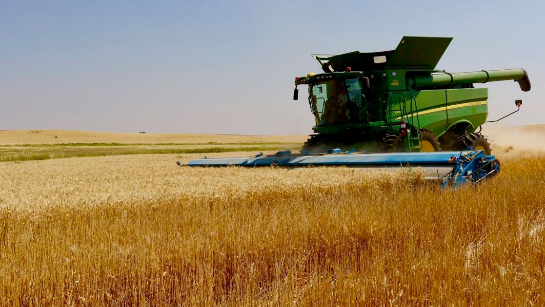 'Miracles' giving LDS Church-owned farms abundant crops during epic drought - Idaho State Journal