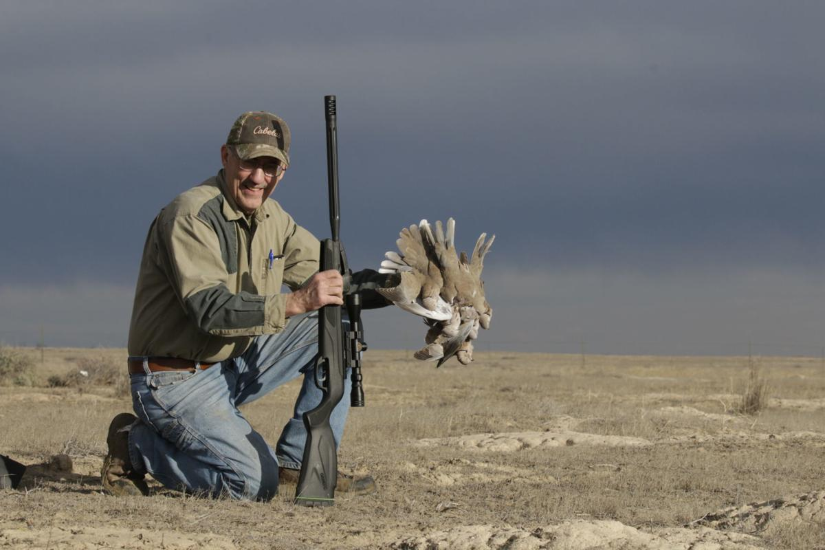 a50e2db713683 Dove hunting is here — almost | Xtreme Idaho | idahostatejournal.com