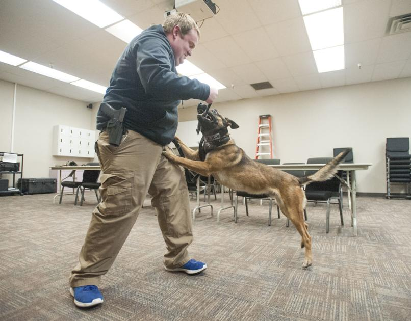 Idaho Police Canine Association Conference planned in Pocatello May 7-11 - Idaho State Journal 1