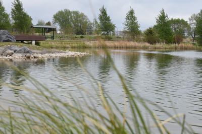 Becker Pond
