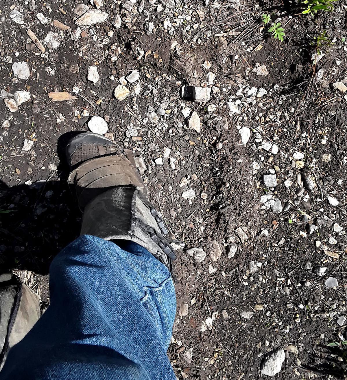 bigfoot 08.jpg - MAIN