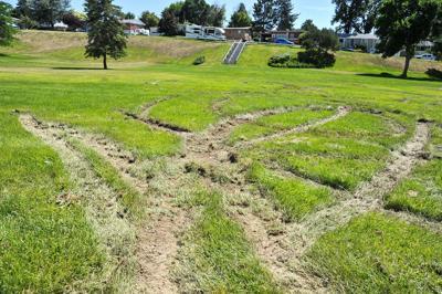 Ruts in Ammon Park