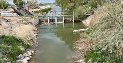 Body found in Chubbuck Canal
