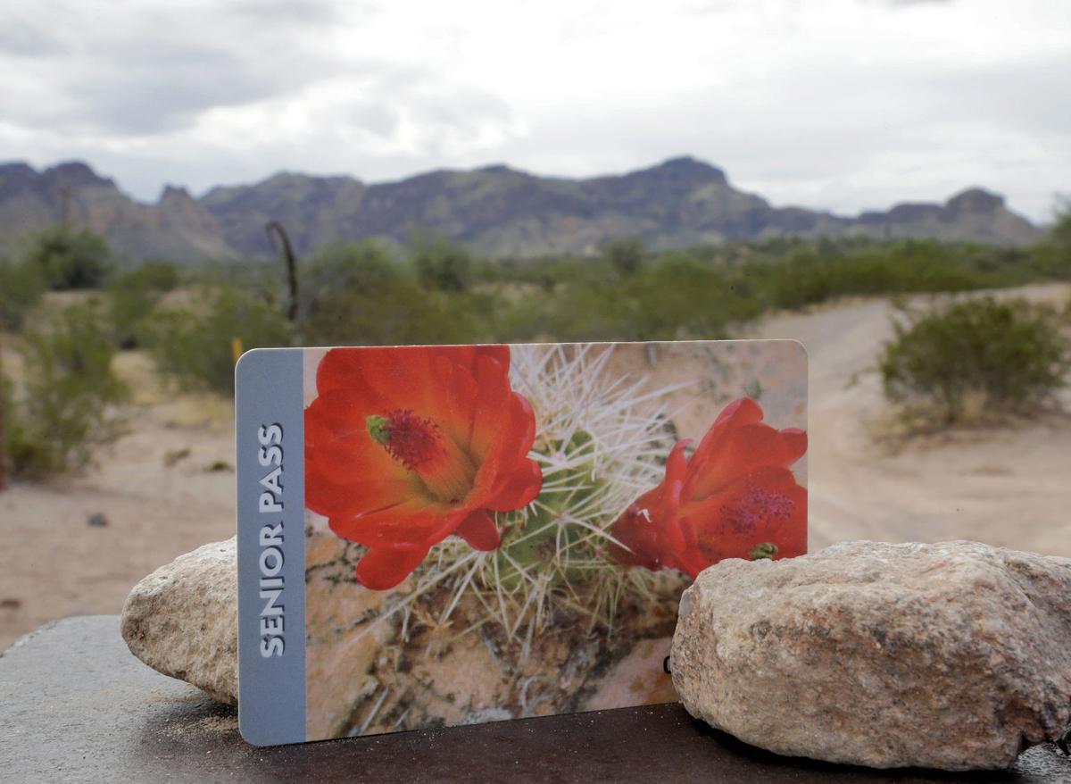 Seniors need to buy us national park passes before massive for National park senior citizen lifetime pass